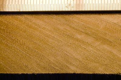 Linbide 24 hardwood cross