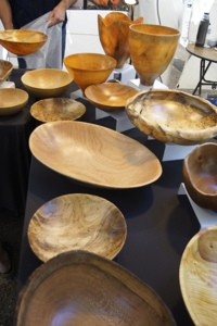 Peter Farkas bowls